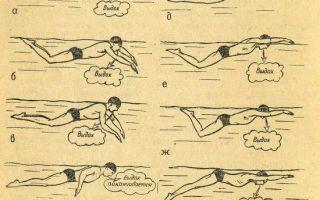 Как научиться плаванию баттерфляем?